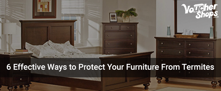 6 Effective Ways to Protect Your Furniture From Termites